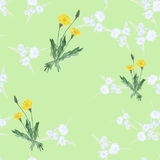 Seamless pattern of three bushes yellow dandelions and wild small white flowers on a light green background. Watercolor. Stock Photos