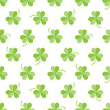 Seamless pattern with three-leaved shamrocks. On white background Royalty Free Stock Photography