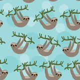 Seamless pattern Three-toed sloth on green branch Stock Image