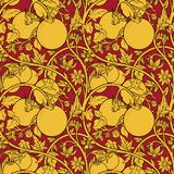 Pattern of tomato branch in a garden. Yellow and red. Stock Photos