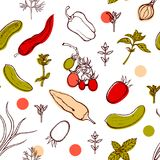 Seamless pattern with tomatoes, peppers, onions, cucumbers, basil, dill, thyme. Background with vegetables and spicy herbs. Hand drawn. Vector illustration Stock Image