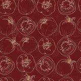 Seamless pattern with tomatos Stock Photos