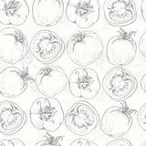 Seamless pattern with tomatos Royalty Free Stock Photos