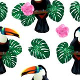 Seamless pattern with toucan bird sitting on branch around palm monstera leaves and flowers on white. Nature colorful jungle seamless pattern with toucan bird Royalty Free Stock Photography