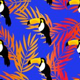 Seamless pattern with toucan and palm branches for textiles and wrapping.. Vector summer background Stock Images