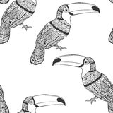 Seamless pattern with toucans. Black and white doodle background Stock Photography