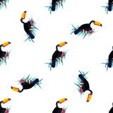 Seamless pattern with toucans. Can be used for textile, fabric. paper wrapping. Seamless pattern with toucans. Can be used for fabric. textile paper wrapping Stock Photos