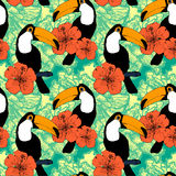 Seamless pattern with toucans Stock Images