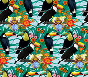 Seamless pattern with toucans and flowers. Hand. Drawn Royalty Free Stock Image