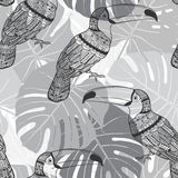 Seamless pattern with toucans and  palm leaves. Monochrome tropi Stock Image