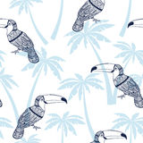 Seamless pattern with toucans and  palm trees. Vector tropical b Royalty Free Stock Images
