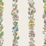 Seamless pattern of tracery of hand drawn herbs and field flowers. Seamless pattern of vertical tracery of hand drawn herbs and field flowers. Vector Royalty Free Stock Photo