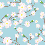 Seamless pattern with tree blossoming brunch Stock Photos