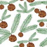Seamless pattern tree twigs and cones painted line and colored on white. Tree, fir, pine cones, twigs. Vector illustration. Seamless pattern tree twigs and cones Royalty Free Stock Photo