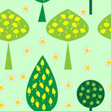 Seamless pattern with trees daisies Stock Images