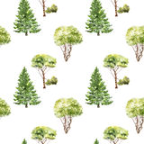 Seamless pattern with trees drawing by watercolor. Firs, pines and bushes at white background, natural ornament, hand drawn illustration Royalty Free Stock Photo