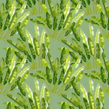 Seamless pattern with tropic plants Stock Images
