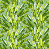 Seamless pattern with tropic plants Royalty Free Stock Images
