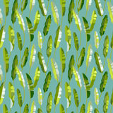 Seamless pattern with tropic plants Stock Image