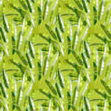 Seamless pattern with tropic plants Stock Photo