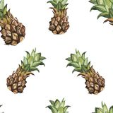 Seamless pattern with tropical Ananas. Element for design of invitations, movie posters, fabrics and other objects. Isolated on white vector illustration