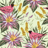 Seamless pattern with tropical birds, flowers,berries and leaves. Exotic flora and fauna. Vintage hand drawn vector illustration in watercolor style Stock Photos