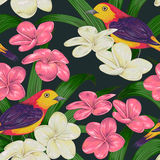 Seamless pattern with tropical birds, flowers and leaves. Exotic flora and fauna. Vintage hand drawn vector illustration in watercolor style Stock Photography
