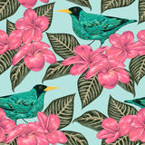 Seamless pattern with tropical birds, flowers and leaves. Exotic flora and fauna. Vintage hand drawn vector illustration in watercolor style Stock Image