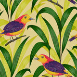 Seamless pattern with tropical birds and plants. Exotic flora and fauna. Vintage hand drawn vector illustration in watercolor style Royalty Free Stock Photos