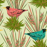 Seamless pattern with tropical birds and plants. Exotic flora and fauna. Vintage hand drawn vector illustration in watercolor style Royalty Free Stock Photography