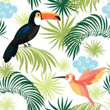 Seamless pattern with tropical birds Royalty Free Stock Photos