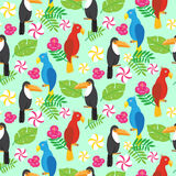 Seamless pattern with tropical brazilian tucans and parrots Stock Photography