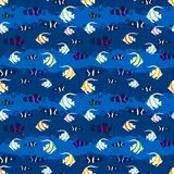 Seamless pattern with tropical fish. Stock Photo