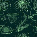 Seamless pattern with tropical fish, jellyfish, marine plants and seaweed. Vintage hand drawn vector illustration marine life. Stock Photos