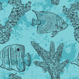 Seamless pattern with tropical fish, marine plants and corals. Vintage hand drawn vector illustration marine life. Stock Photography