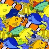Seamless pattern Tropical fish Royalty Free Stock Image