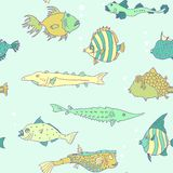 Seamless pattern from tropical fish. Vector illustration Stock Photography