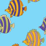 Seamless pattern from tropical fish. Vector illustration Royalty Free Stock Images