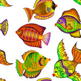 Seamless pattern with tropical fish on a white background. Seamless pattern with colorful tropical fish on a white background Royalty Free Stock Photo