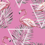 Seamless pattern with tropical Flamingo and leaves.   Royalty Free Stock Photos