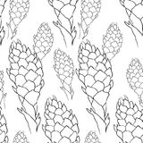 Seamless pattern Tropical flower of ginger  coloring  torch. vec. Seamless pattern Tropical flower ginger coloring torch  vector illustration Stock Images