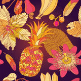Seamless pattern, tropical flowers. Royalty Free Stock Images