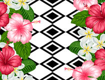 Seamless pattern with tropical flowers hibiscus and plumeria. Background made without clipping mask.  Stock Photography