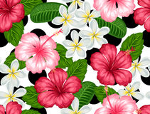 Seamless pattern with tropical flowers hibiscus and plumeria. Background made without clipping mask.  Royalty Free Stock Images