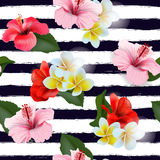 Seamless pattern with tropical flowers. Vector Royalty Free Stock Images