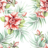 Seamless pattern with tropical flowers. Watercolor illustration Stock Photos