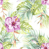 Seamless pattern with tropical flowers. Watercolor illustration. Royalty Free Stock Photo
