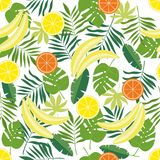 Seamless pattern with tropical fruits and leaves on a white background. Easy to use for the background, textiles, packaging paper. Vector illustration Royalty Free Stock Photos