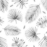 Seamless pattern tropical leave. Hand pencil drawing. Design for textiles and fabrics. Seamless pattern tropical leave. Hand pencil drawing stock illustration