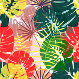 Seamless pattern of tropical leaves. In Royalty Free Stock Photo